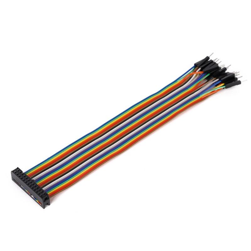 Ribbon Cable 26 Wire Female Idc Male 20 Cm